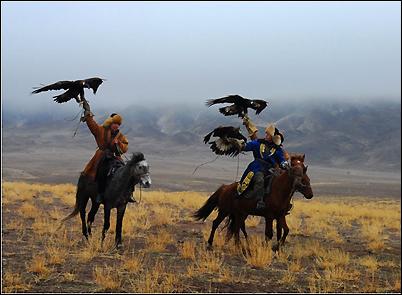 Berkutchi à cheval & aigles royaux